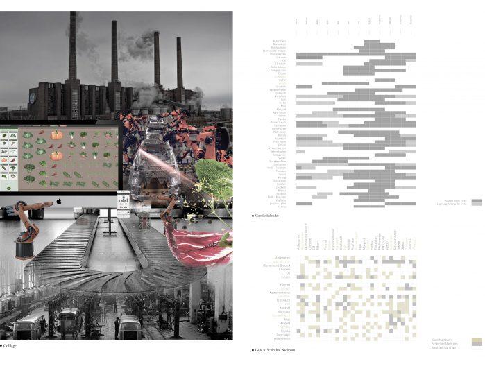 Collage zum Entwurf, Gemüsekalender und Übersicht zu Pflanznachbarn